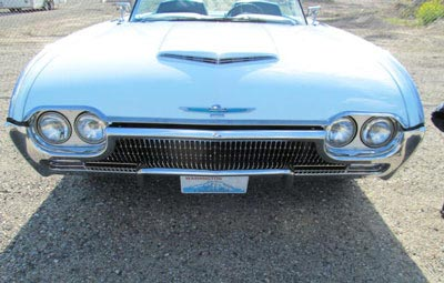 1963 thunderbird grille and hood bird ornament bird nest thunderbirds